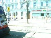 Wien (17)