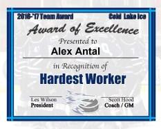 hardestworker-alex-antal