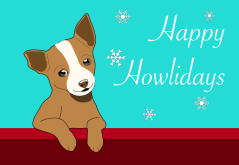 Chihuahua Holidays