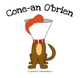 cone_an_obrien.jpg