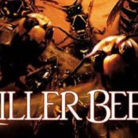Hazards of Summer Week Three: Killer Bees!!