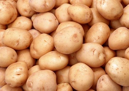 kartoshka - Камеры для хранения картофеля