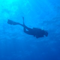 10 Essentials for your Save-a-Dive Kit!