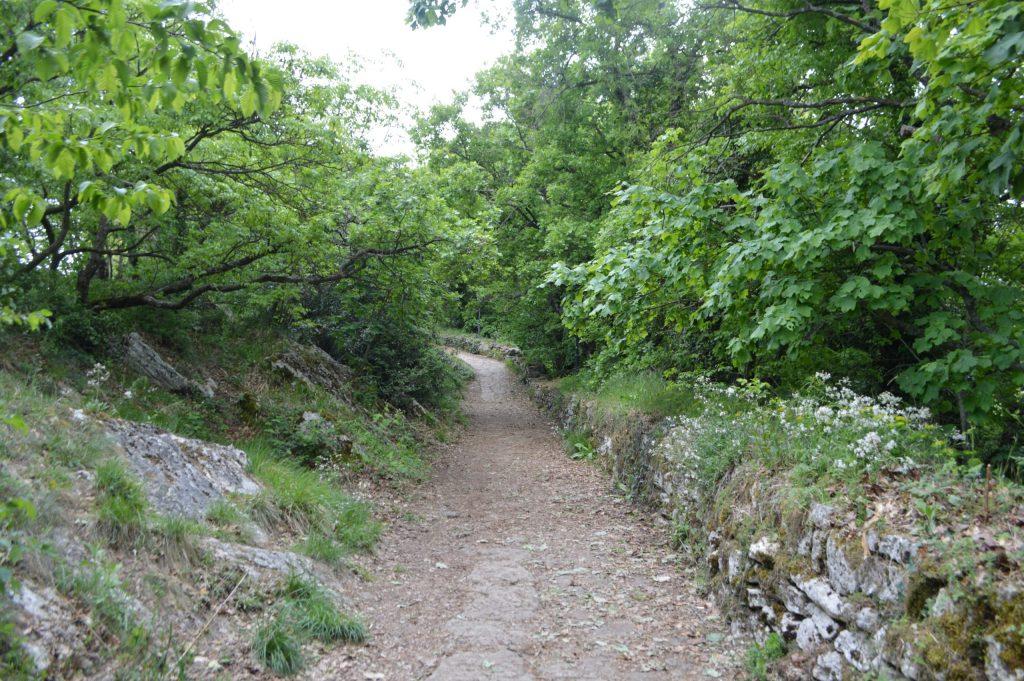 Camino hacia la Tercera Torre (Montale)