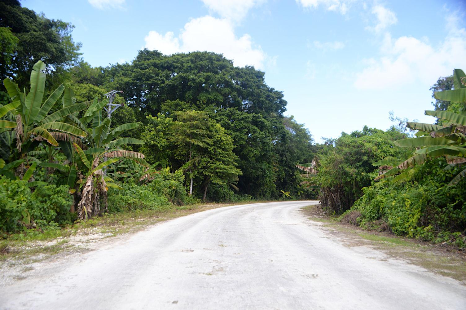 Carretera de Peleliu
