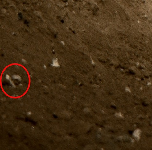Moneda Muestra Habayusa2 Asteroide