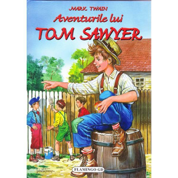 Aventurile lui Tom Sawyer rezumat