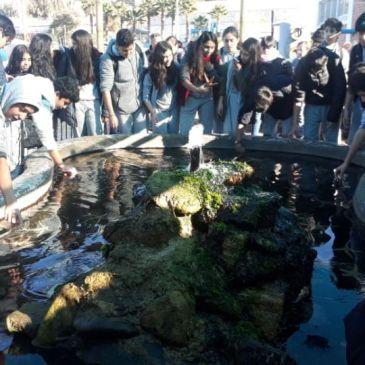 Alumnos de 8° Básico Visitan UCN y Principales Atractivos Culturales y Educativos de Coquimbo