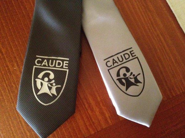 Corbatas del equipo de debate del Colegio Caude de Majadahonda