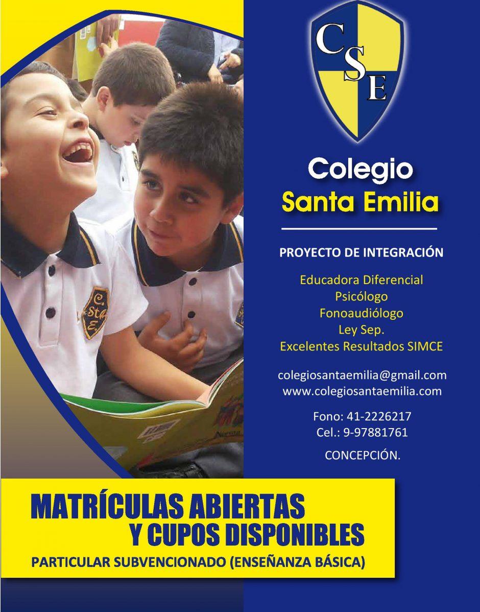 cropped-afiche-colegio-sta-emilia-page-001.jpg