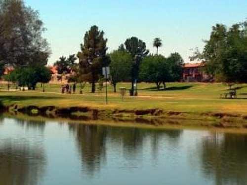 Shelly Sharpe Disc Golf