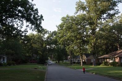 Our neighborhood, Oak Forest