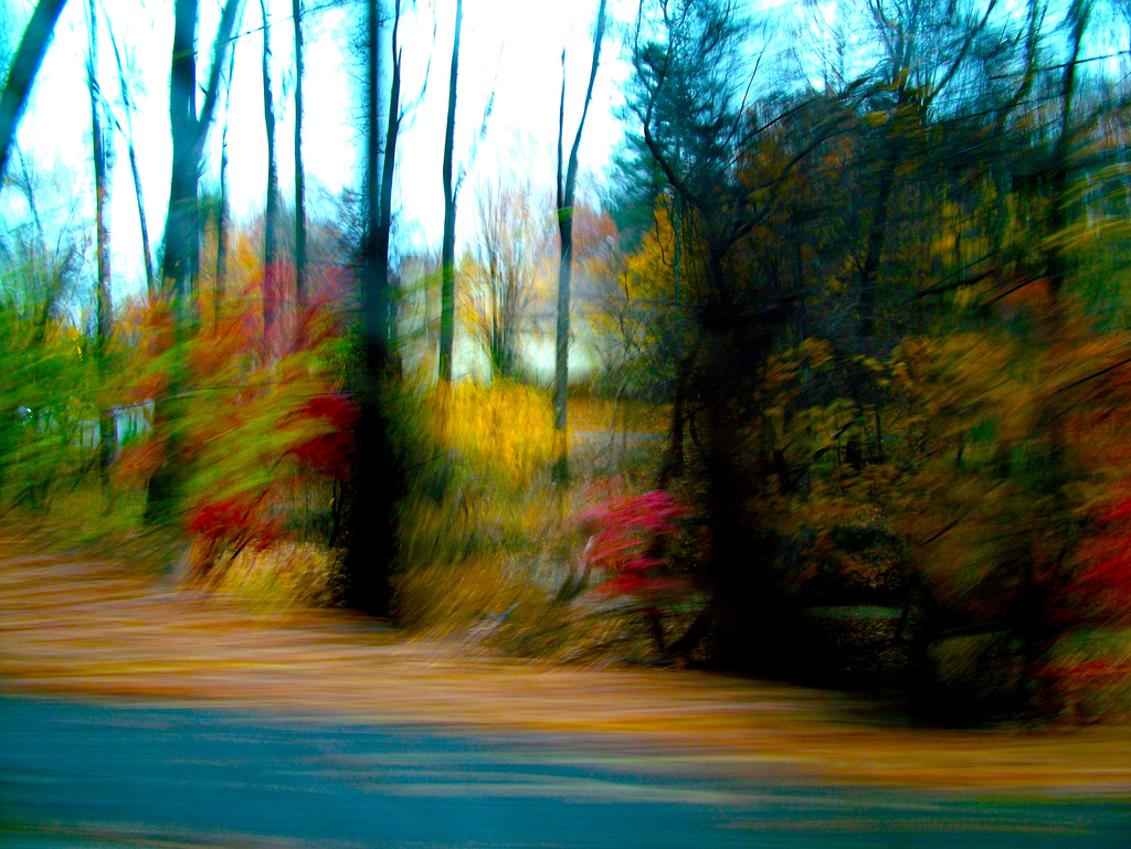 Thanksgiving Drive by Kate Mereand-Sinha