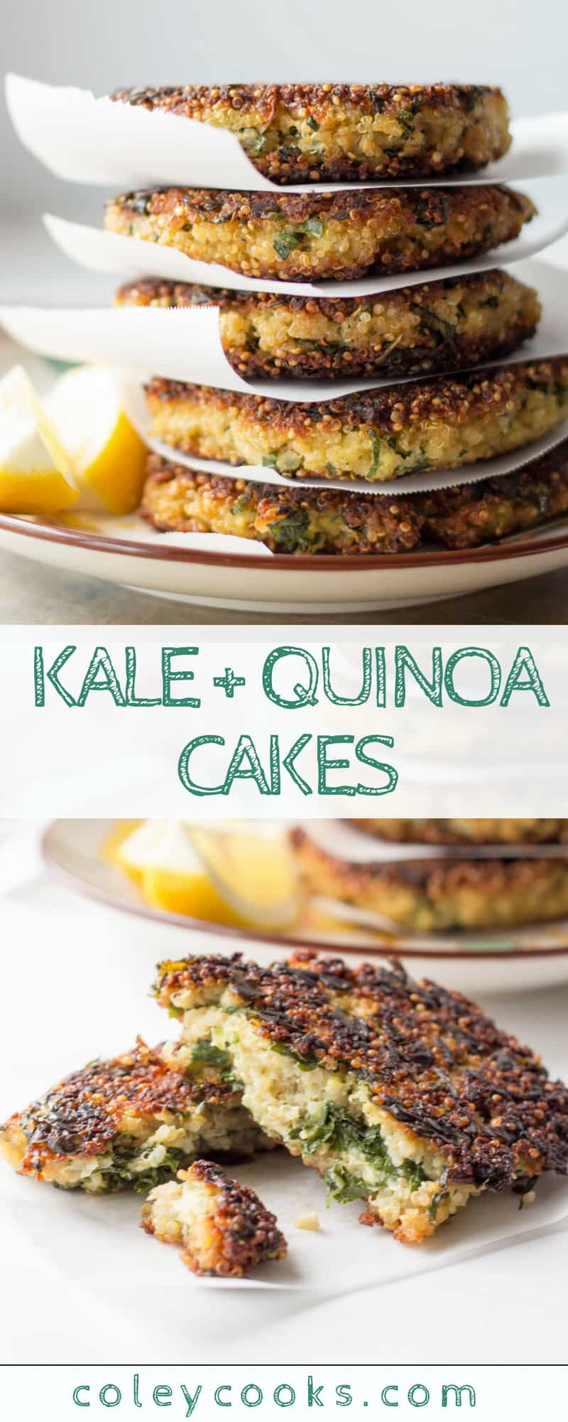 KALE + QUINOA CAKES | This easy vegetarian recipe is high in protein, fiber, and FREEZER FRIENDLY! It makes a lovely lunch, dinner or appetizer! #plantbased #recipe #protein #kale #quinoa #dinner | ColeyCooks.com