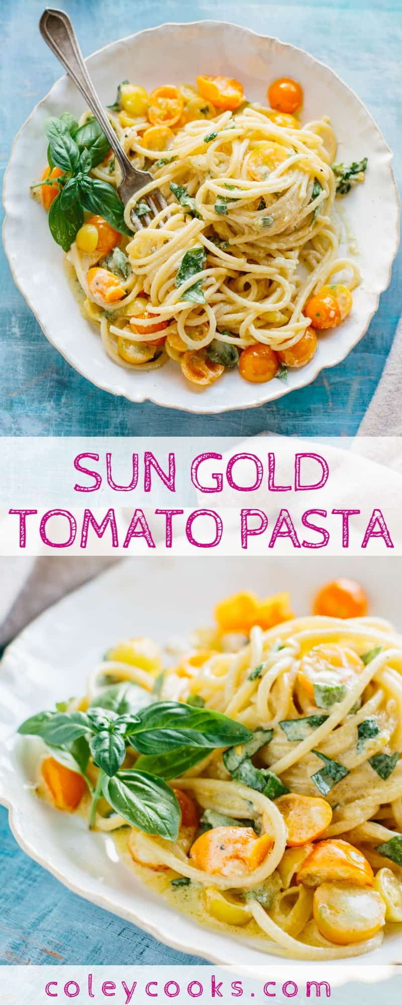SUN GOLD TOMATO PASTA   This no cook sauce is so easy to make and allows those sugary sweet sun gold tomatoes to shine. My favorite pasta ever!  #sungold #tomatoes #easy #pasta #recipe   ColeyCooks.com