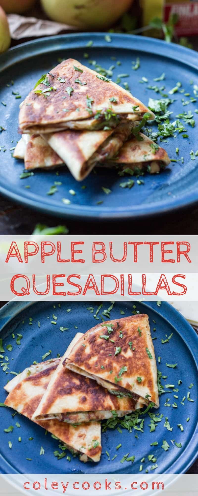 APPLE BUTTER QUESADILLAS | This quick and easy recipe is a sweet, salty, and addictive snack! Great for kids as lunch or an after school snack!. #easy #apple #applebutter #quesadilla #pepperjack #snack #afterschool #kids #recipe | ColeyCooks.com