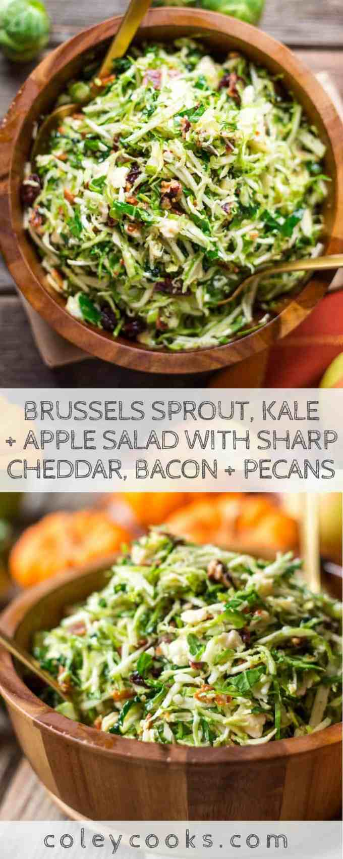 BRUSSELS SPROUT, KALE + APPLE SALAD with SHARP CHEDDAR, BACON + PECANS | Easy, flavorful and healthy fall salad perfect for Thanksgiving. #thanksgiving #side #salad #kale #brusselssprouts #recipe #apples #easy #makeahead | ColeyCooks.com