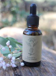 wild-crafted-manzanita-flower-essence