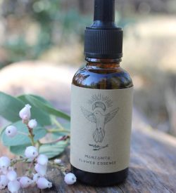 wild-crafted-manzanita-flower-essence