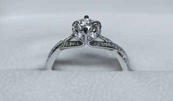 feb-ring