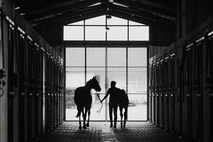 Mare and foal being brought back into the barn