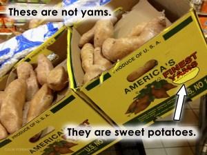 Photograph of box of sweet potatoes, not yams