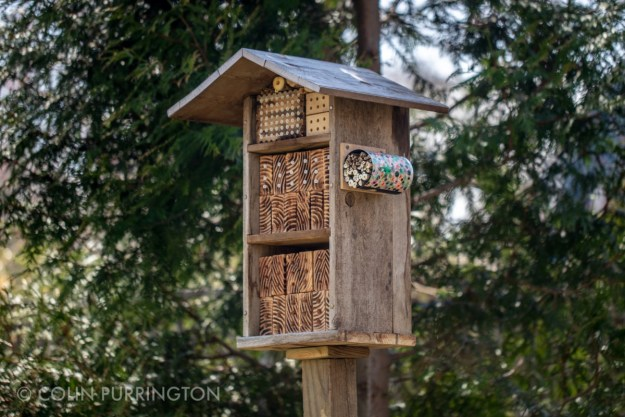Three-level bee and wasp hotel