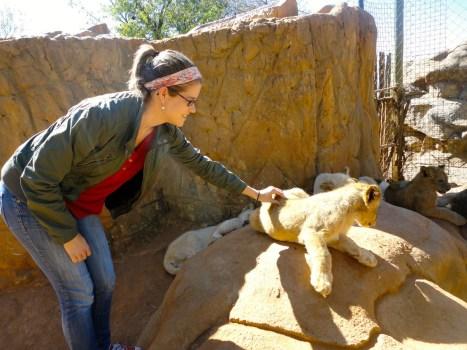 Leslie pets a lion