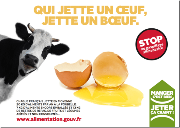 gaspillage-alimentaire-vache