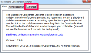 Collaboate Launcher Advanced Tab