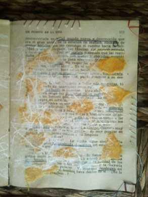 página derecha camino azaroso