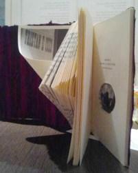 interior del libro de Rosario alterado, menos las páginas que cuentan la historia del libro