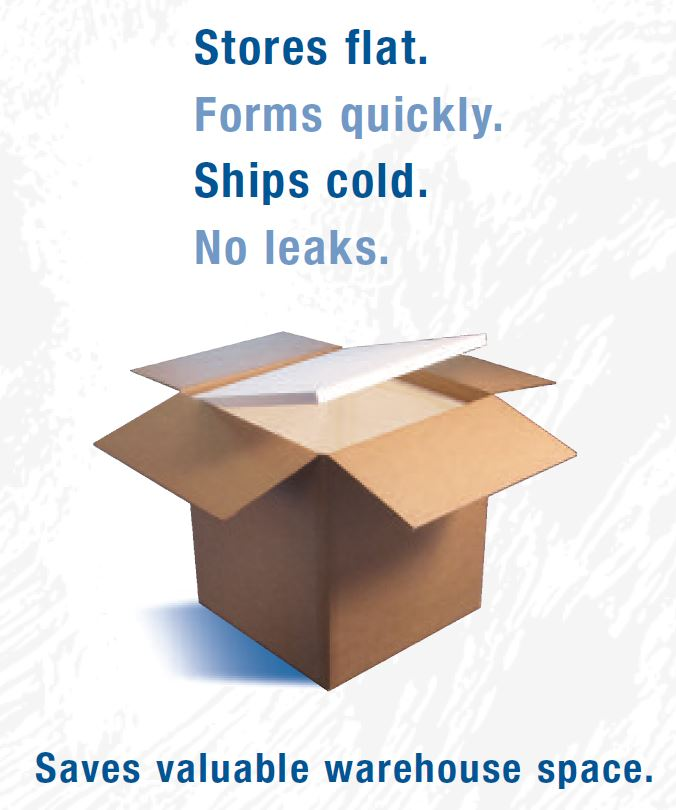 Tagline with box