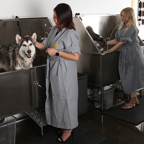 best luxury dog grooming