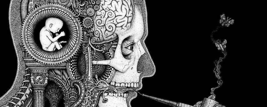 In cerca della coscienza umana