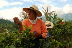 Rosa Helena Lopez de Soto, Aguadas Colombia
