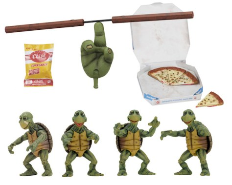 54064-Baby-Turtles-feat