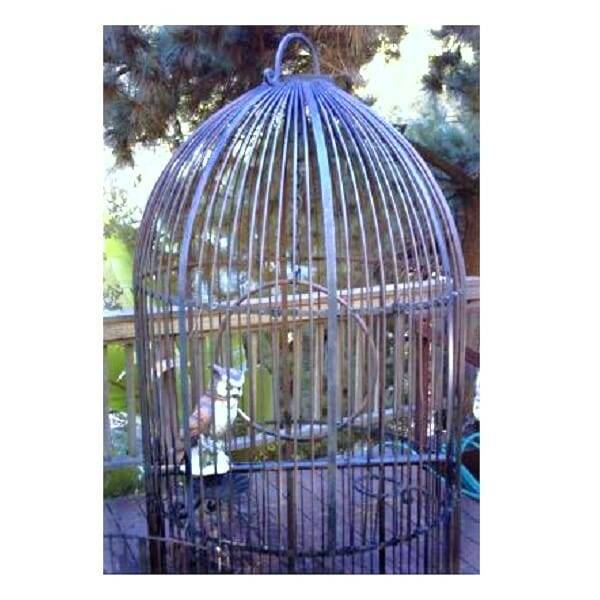 Wrought Iron Birdcage XL close up