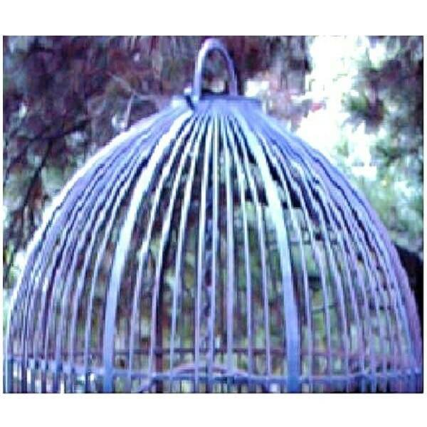 Wrought Iron Birdcage XL top close up