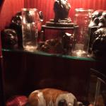 Heads up for more Bulldog memorabilia