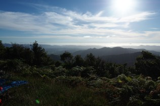 View from middway through the Raetea Forest.
