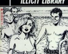 Regarding the inclusion of certain pornographic titles and fanzine content on this site