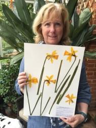 Daffodil specimen ©June James