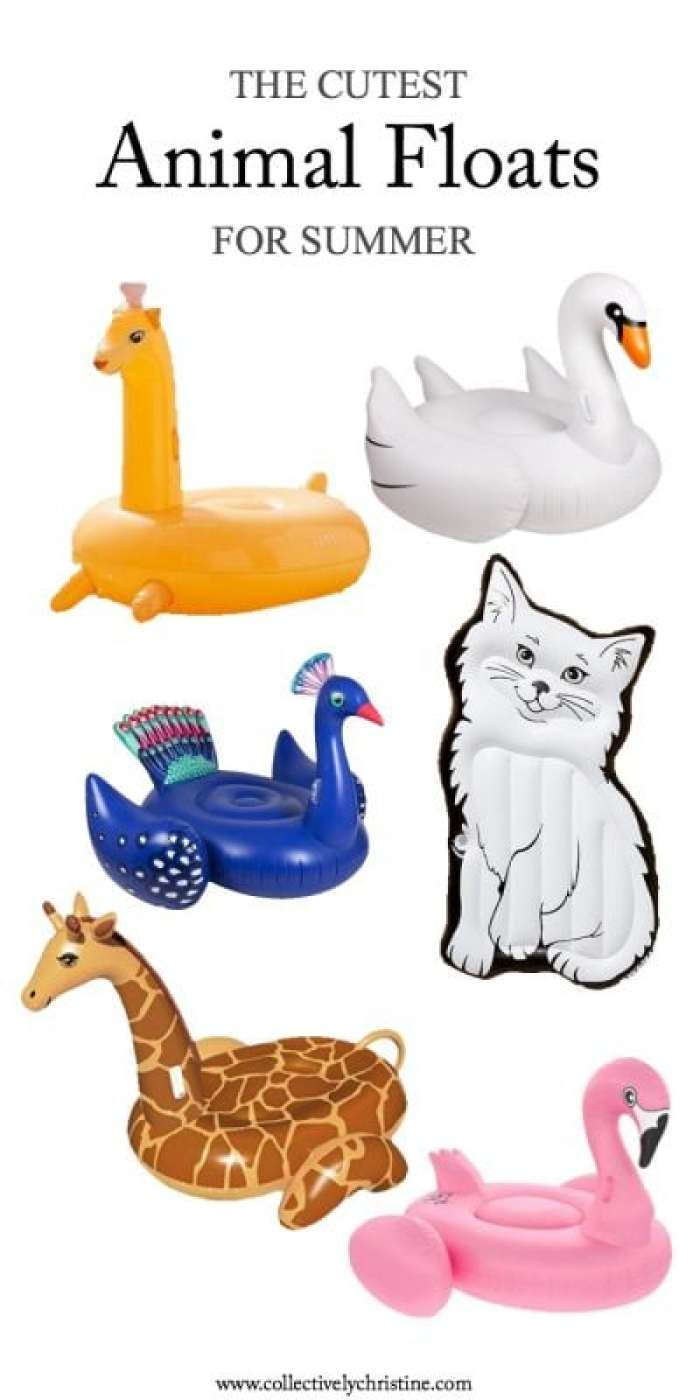 the cutest animal floats for summer