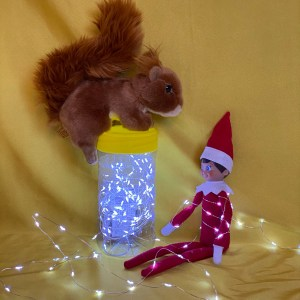 Squirrel and elf with fairy lights