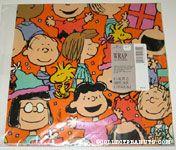 Peanuts Gang at party gift wrap