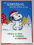 Snoopy'GrandSon' Christmas Card