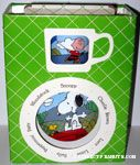 Peanuts Gang outdoor Plate, Bowl and Mug Set