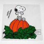 Snoopy on Pumpkin Halloween Window Gel Cling