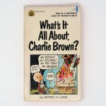What's It All About, Charlie Brown Book